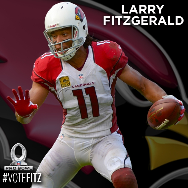PRO BOWL PLAYER CARDS - FITZGERALD
